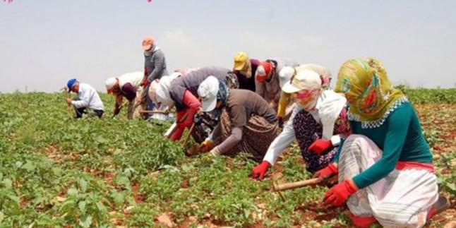 Tarım işçisiydiler şimdi ünlü markalara kıyafet dikiyorlar