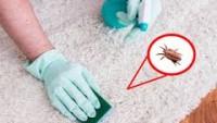 Çocuğunuzda alerji varsa oda temizliğinde bunlara dikkat edin! Günlerce uykusuz kalabilirler…